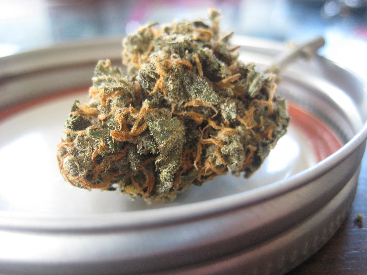Marihuana legalmente en España